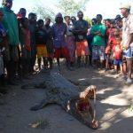 תנין בטיול בהתאמה אישית למדגסקר