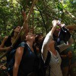 מצלמים בטיול בהתאמה אישית למדגסקר