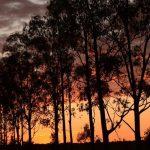 שקיעה בטיול בהתאמה אישית למדגסקר