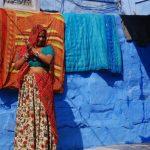טיול להודו מאורגן 12 יום