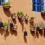 טיול למרוקו בסוכות