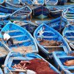 נמל בטיול למרוקו