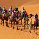 נוף מדברי בטיול מאורגן למרוקו