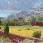 נוף ירוק בטיול מאורגן למרוקו