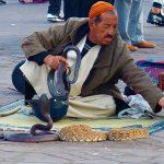 אדם ברחוב בטיול מאורגן במרוקו