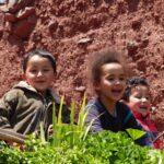 ילדים צוחקים בטיול מאורגן למרוקו