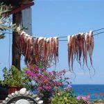 מאכלי ים בטיול משפחות ביוון