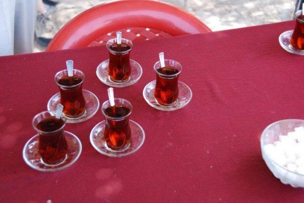 התה ומפלסו של ים המלח מאת: חן כץ מדריך טיולים