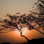 שקיעה יפה בטיול מאורגן בנמיביה