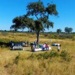 הפסקת צהריים בטבע בטיול לזימבבואה